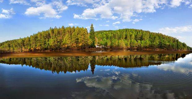 Scotland - Trees Reflected in Loch